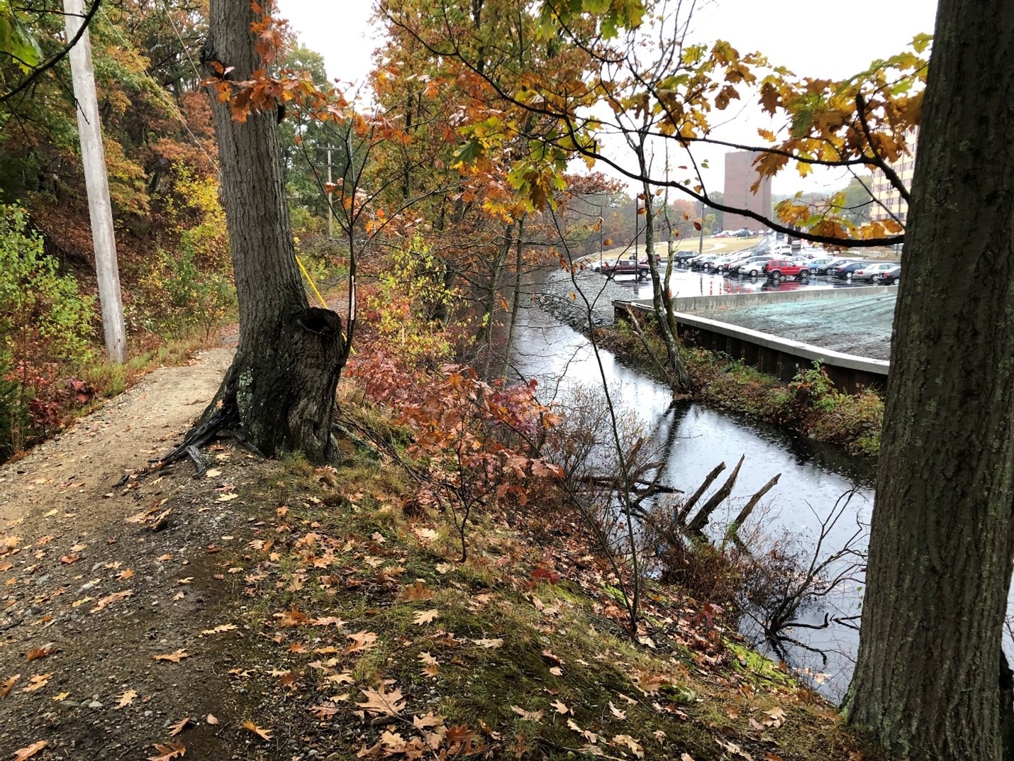 woonasquatucket River along the CMRP source area - environmental consulting services firm