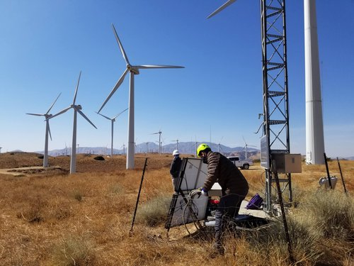 team working on wind power environmental consulting services firm